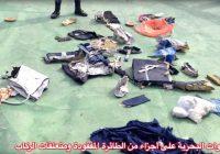 FORENZIČKI EKSPERT: Posmrtni ostaci ukazuju na eksploziju u avionu EgyptAira