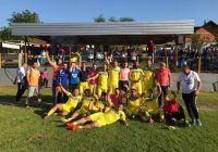FK Seona – Div sa Ratiša